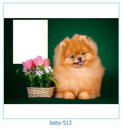 Marco de la foto del bebé 512