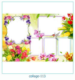 Collage picture frame 113