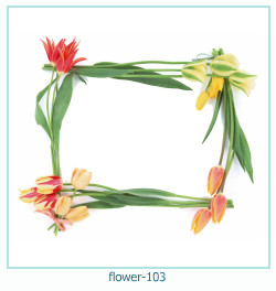 flower Photo frame 103