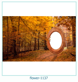 flower Photo frame 1137