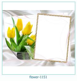 gratis fotoeffekter online