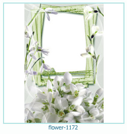flower Photo frame 1172