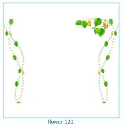 Marco de la foto de la flor 120