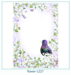 fleur Cadre photo 1227