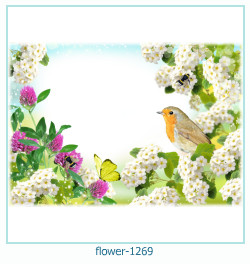 flower Photo frame 1269