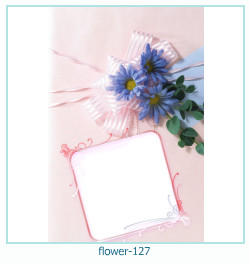 Marco de la foto de la flor 127