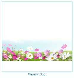 flower Photo frame 1356