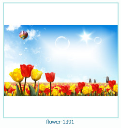 flower Photo frame 1391
