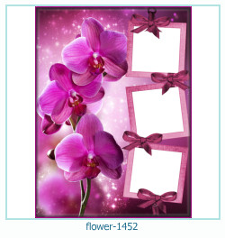 flower Photo frame 1452