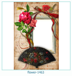 Marco de la foto de la flor 1463