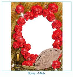 Marco de la foto de la flor 1466