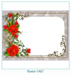 Marco de la foto de la flor 1467