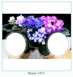 flor Photo Frame 1471