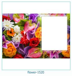 flor Photo Frame 1520