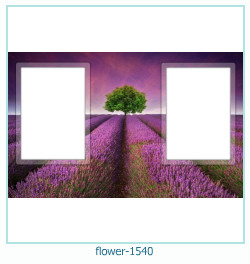 flower Photo frame 1540