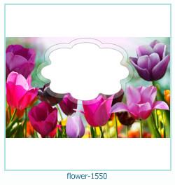 fleur Cadre photo 1550