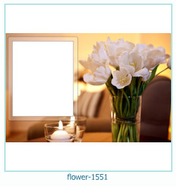 fleur Cadre photo 1551