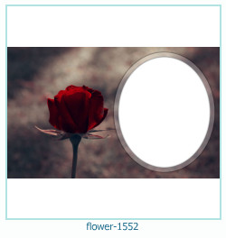 flower Photo frame 1552