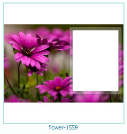 flower Photo frame 1559