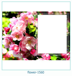 flower Photo frame 1560