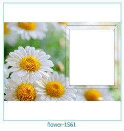 flower Photo frame 1561
