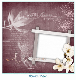 fiore Photo frame 1562