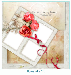 fleur Cadre photo 1577