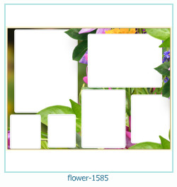 flower Photo frame 1585