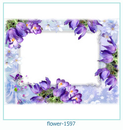 fleur Cadre photo 1597