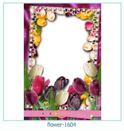 Marco de la foto de la flor 1604