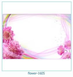 Marco de la foto de la flor 1605