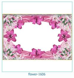 Marco de la foto de la flor 1606
