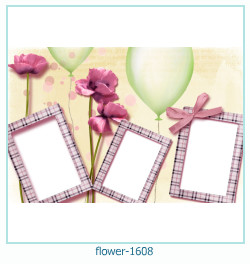 Marco de la foto de la flor 1608