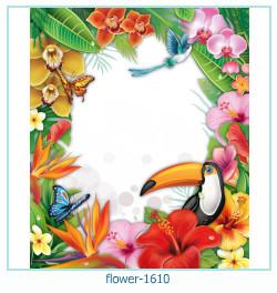 Marco de la foto de la flor 1610