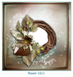 Marco de la foto de la flor 1611