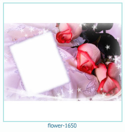 flower Photo frame 1650