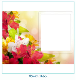 flower Photo frame 1666