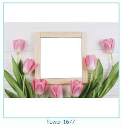 fiore Photo frame 1677