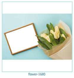 fiore Photo frame 1680