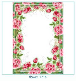 Marco de la foto de la flor 1714