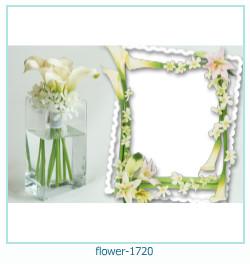 virág képkeret 1720