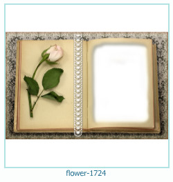 fiore Photo frame 1724