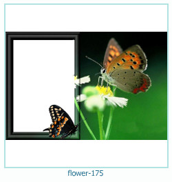 flower Photo frame 175