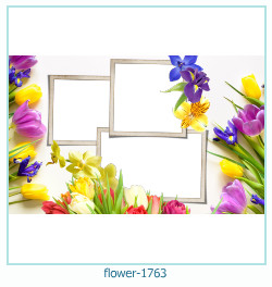 fiore Photo frame 1763