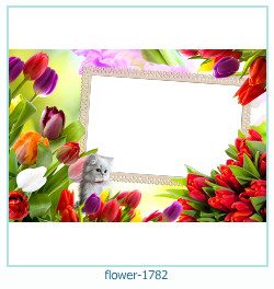 flower Photo frame 1782