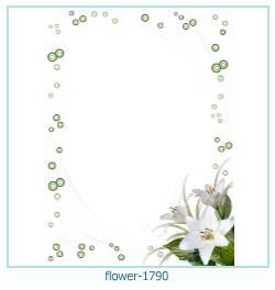 Marco de la foto de la flor 1790