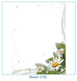 Marco de la foto de la flor 1791