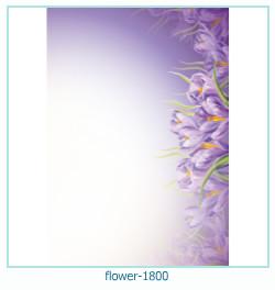 Blume Fotorahmen 1800