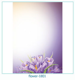 flower Photo frame 1801