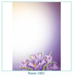 Blume Fotorahmen 1801